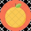 Citrus Fruit Fresh Icon