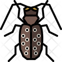 Citrus Long Horned Beetle Icon