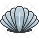 Clam Shell Icon