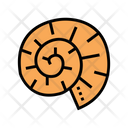 Clam Shell Color Icon