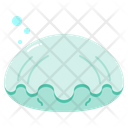 Clam Shell Animal Icon