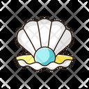 Seashell Sea Shell Shell Icon