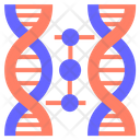 Cloning Dna Cloning Dna Icon