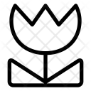 Close Up Icon