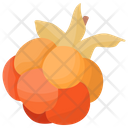 Cloudberry Icon