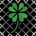Clover Flower Leaf Icon