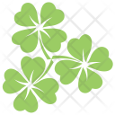 Clover Flowers Icon