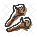 Cloves Plant Spice Icon