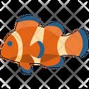 Clownfish Animal Fish Icon