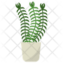 Club Moss Plant Icon