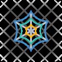 Cobweb Arachnid Spider Icon