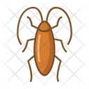 Cockroach Bug Insect Icon