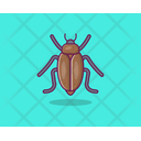 Cockroach Insect Moth Icon