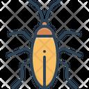 Cockroach Blattodea Bug Icon