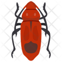 Cockroach Insect Blattaria Icon