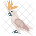 Cocktail Parrot Icon