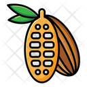 Cocoa Chocolate Beans Coffee Beans Icon