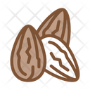 Cocoa Beans Food Icon