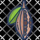 Cocoa Fruit Fruit Healthy Icon