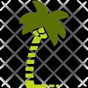 Coconut Trees Plantation Icon