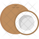 Coconut Fruit Tropical Icon