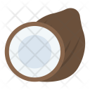 Coconut Food Nutrition Icon