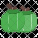 Coconut Fruit Healthy Icon