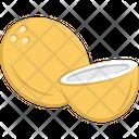 Coconut Nut Food Icon