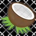 Coconut Tropical Fruit Half Coconut Icon