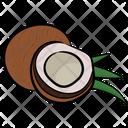 Coconut Food Fruit Icon