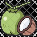 Fruit Vegan Coconut Icon