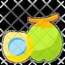 Coconut Fruit Food Icon