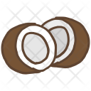 Coconut Seed Shell Icon