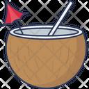 Coconut Drink Beach Drink Coconut Water Icon