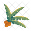 Coconut Leaves Icon