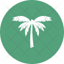 Beach Coconut Tree Icon