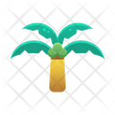 Coconut Tree Summer Sunny Day Icon