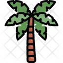 Coconut Tree Nature Icon