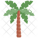Coconut Tree Nature Icon