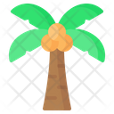Coconut Palm Tree Icon