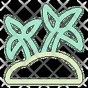 Coconut Tree Palm Tree Beach Icon