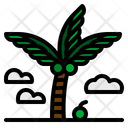 Coconut Tree Beach Icon