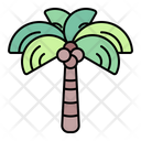 Coconut Tree Palm Icon
