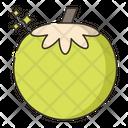 Coconut Water Coconut Fruit Icon