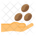 Coffee Beans Coffee Hand Icon