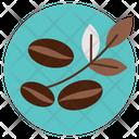 Bean Coffee Leaf Icon