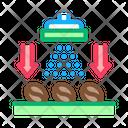 Coffee Beans Washing Icon