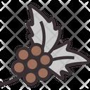 Coffee Tree Coffee Seeds Icon