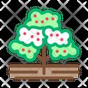 Coffee Tree Factory Icon