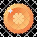 Coin Irish Money Icon